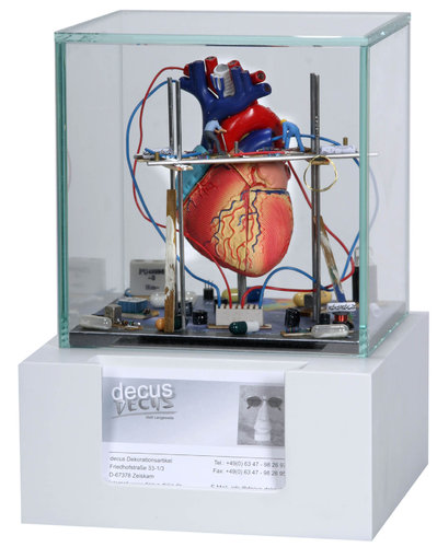 Showcase supermini Heart with supportShowcase supermini Heart with support