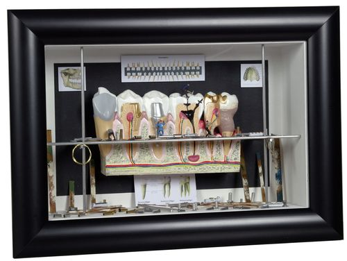 "Shadow box medium ""Dentistry"""